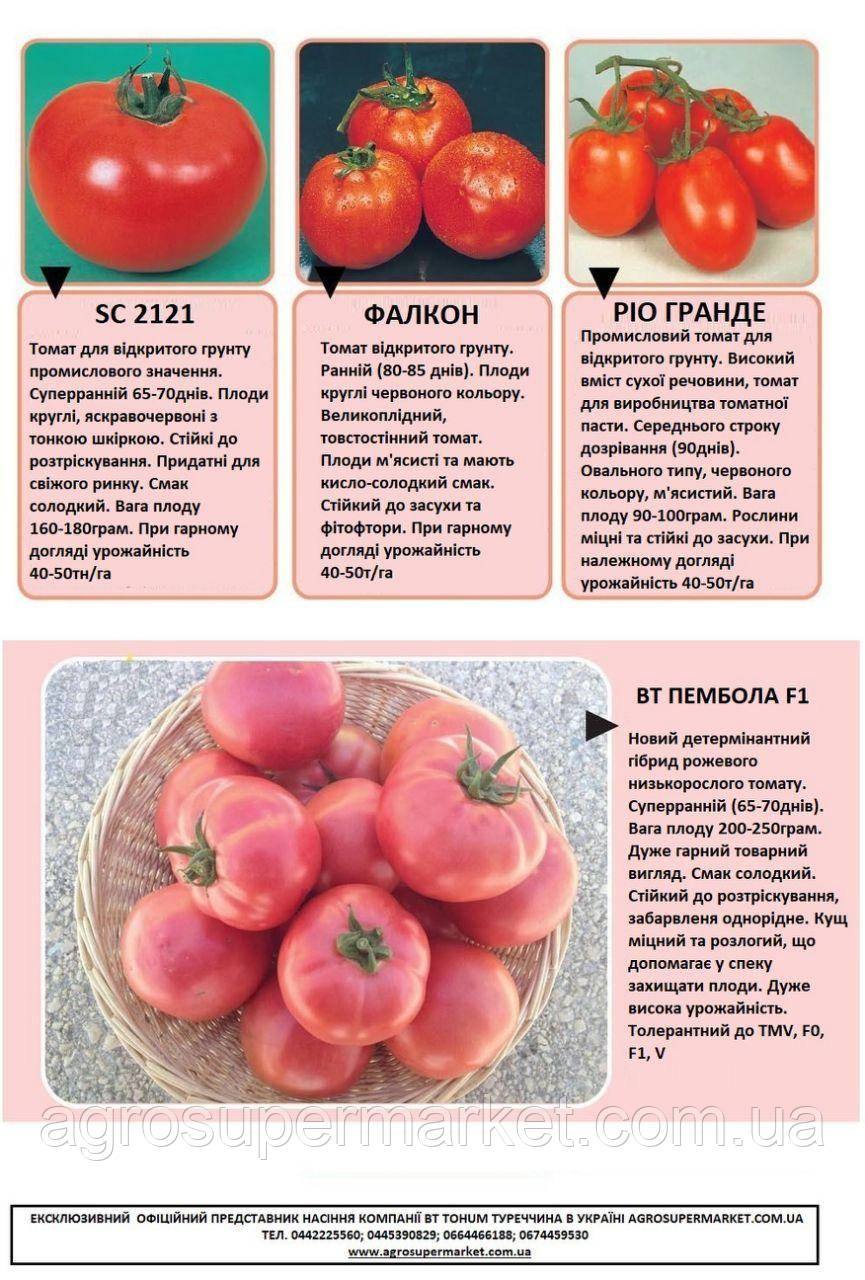 Pembola f1 Determinate pink tomato. Early (65-75 days) 10gr/2000шт, фото 1