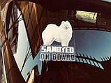 Наклейка на авто / машину Шетландская овчарка (шелти) на борту (Shetland Sheepdog On Board), фото 2