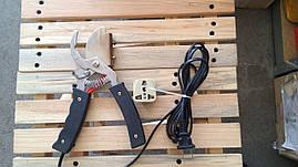 Аппарат для купирования хвостов поросят, электрического типа