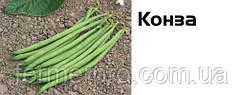 Семена фасоли Конза 100 000 семян, Syngenta