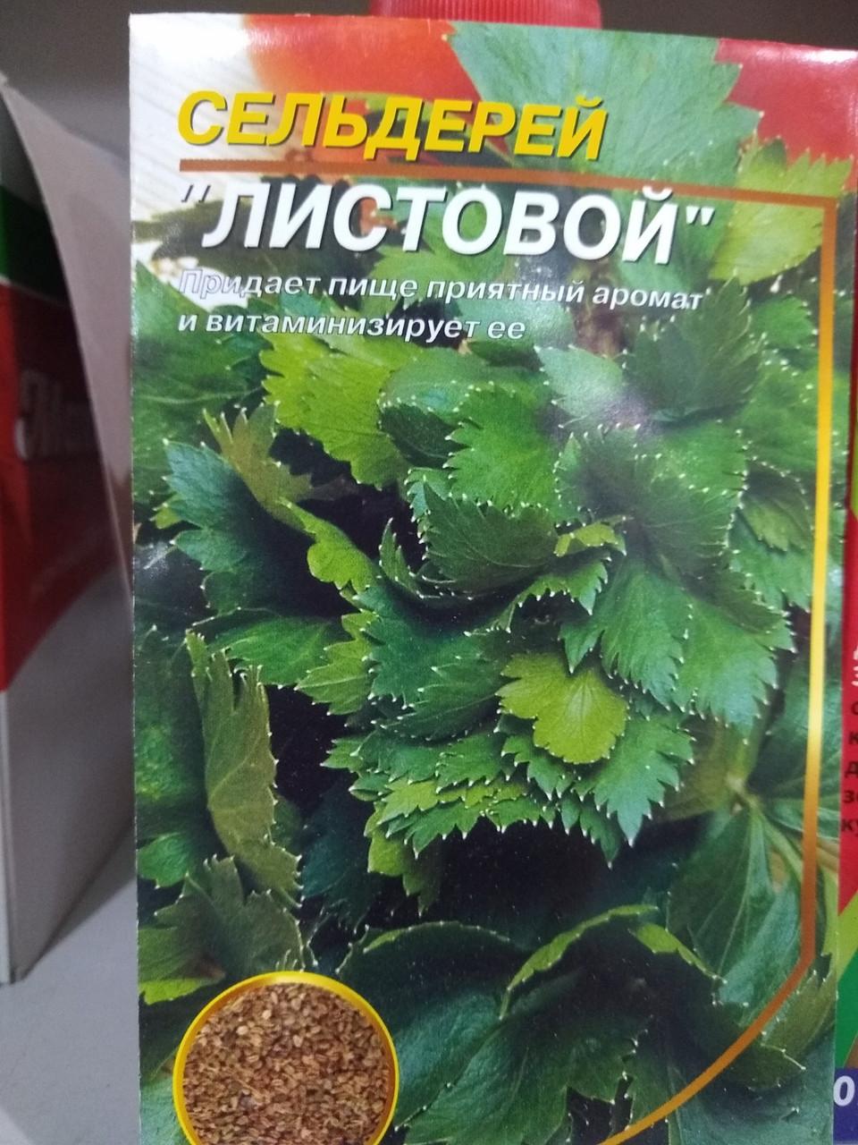 Насіння селери листової сорт 0,5 грам насіння Україна