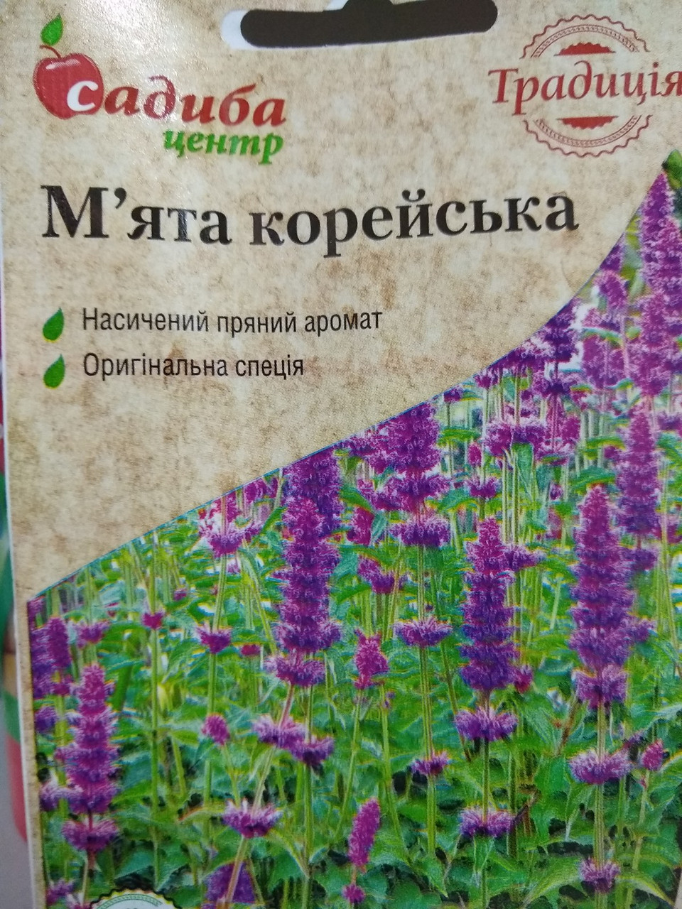 Мята корейская семена , 0.05 грамм