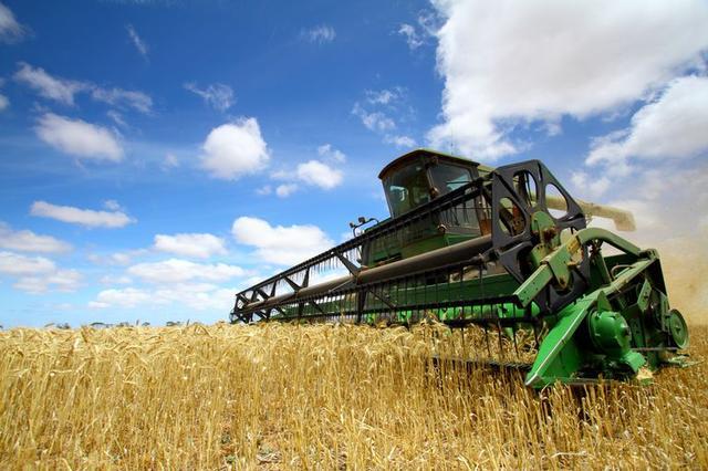 Сельскохозяйственные товары