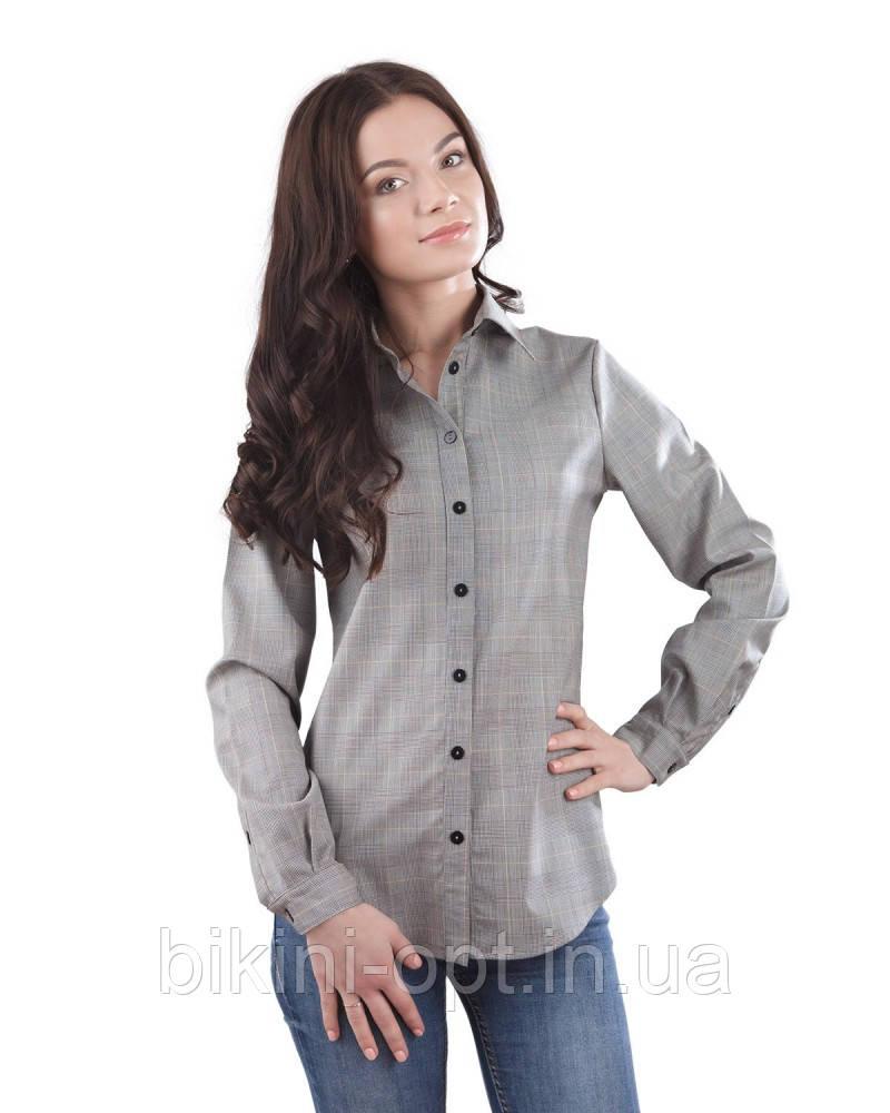 BL 224 Блузка жін.