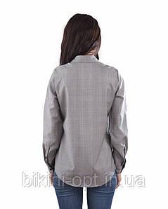 BL 224 Блузка жін., фото 2