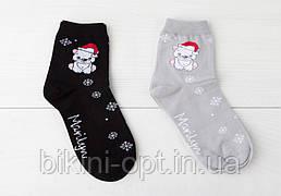 SC TEDDY BEAR Шкарпетки жіночі бавовняні
