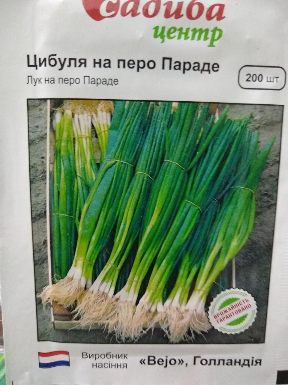 """Лук на перо Параде 200 семян, """"Bejo"""", Голландия"""