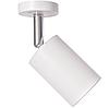 Точечный светильник для акцентного освещения 10Вт AL530 4000K белый