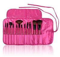 Подарок на день влюбленных набор кистей для макияжа  SHANY 12 Piece PINK