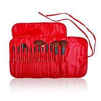 Подарок на день влюбленных набор кистей для макияжа SHANY Professional 12 Piece RED
