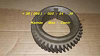 236-1005030  Шестерня коленвала ЯМЗ - 236, 238  ( Завод )