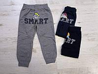 Спортивные штаны для мальчика оптом, Sincere, 80-110 см,  № LL-2635, фото 1