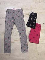 Лосины для девочек оптом, Sincere, 80-110 см,  № LL-2600, фото 1