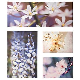 IKEA GRONBY (603.191.61) Изображение, 4 шт, цветочная свежесть