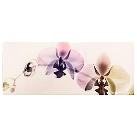 IKEA PJATTERYD (502.958.77) Картина, спектр орхидей