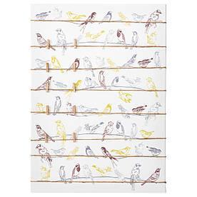 IKEA PJATTERYD (003.290.35) Картина, птицы на проводах
