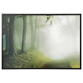 IKEA BJORKSTA (691.780.53) Изображение с рамкой, лесной дорожкой, серебром