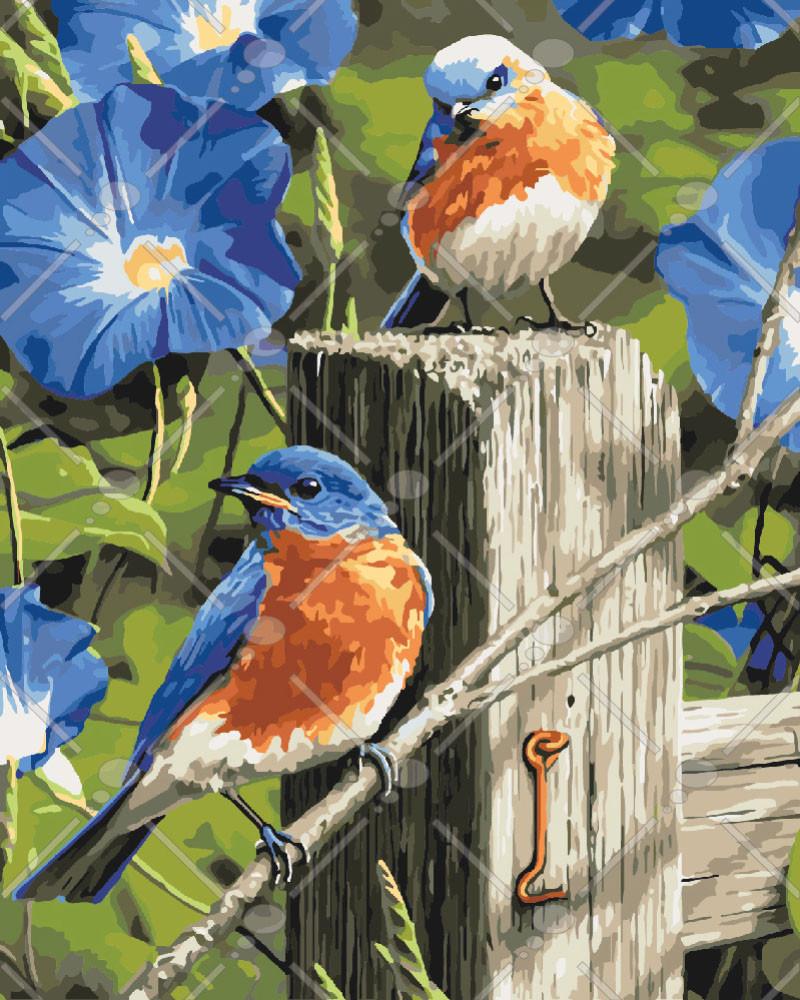 Набор живописи по номерам Весенние гости KH4090 Идейка 40 х 50 см