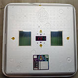 ИНКУБАТОР РЯБУШКА ИБ-100 ТЭН автоматический переворот, цифровой терморегулятор, фото 7
