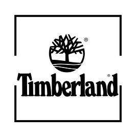 Зимові Чоловічі черевики Timberland