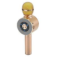 Микрофон DM Karaoke WS668, Караоке микрофон, Беспроводной микрофон, Блютуз микрофон, Вокальный микрофон, фото 1