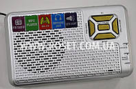 Портативный проигрыватель - Golon RX-991 MP3 USB TF FM AUX