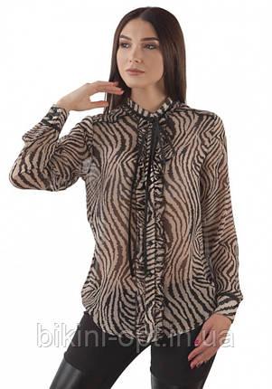 BL 179 Блузка жін., фото 2