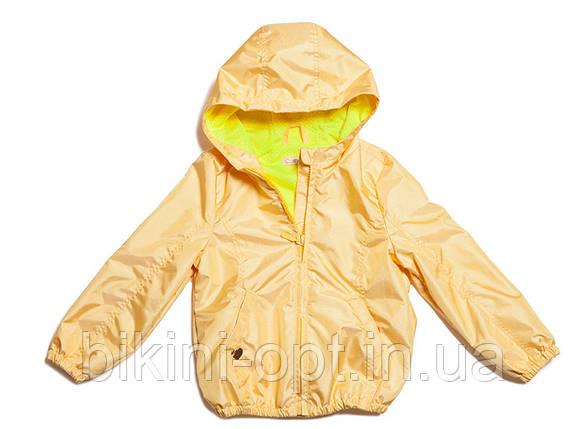 КД 021 Куртка дівч, фото 2