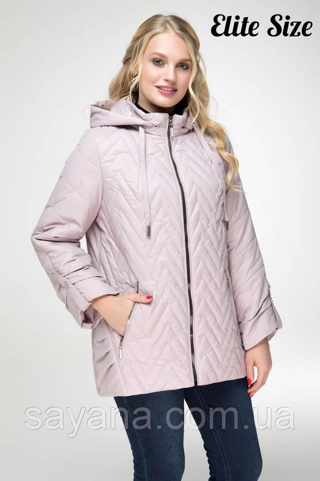 женская куртка большого размера опт