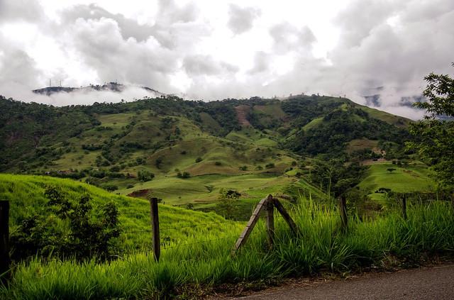 Кофе Колумбия Супремо, как выращивают и собирают кофе в Колумбии, обработка кофе