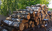 Полупаем лес кругляк береза, ольха