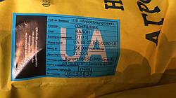 Жалон Гранд під гербіцид Експрес 50 грам, Соняшник стійкий до семи рас вовчка A-G для Півдня України. Екстра фракція
