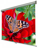 Экран для проектора Walfix SNM-5 300 х 225 см