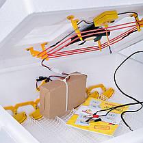 Інкубатор автоматичний Теплуша на 63 яйця (ttv12w), фото 3