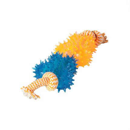 Игрушка для собак Бабочки шипованные с грейферами TPR 9*26 см, фото 2
