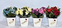 """Декоративные искусственные цветы """"Розочки"""" в квадратных горшках"""