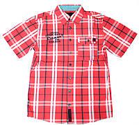 Рубашка для мальчика подростка 131-31B-15-645