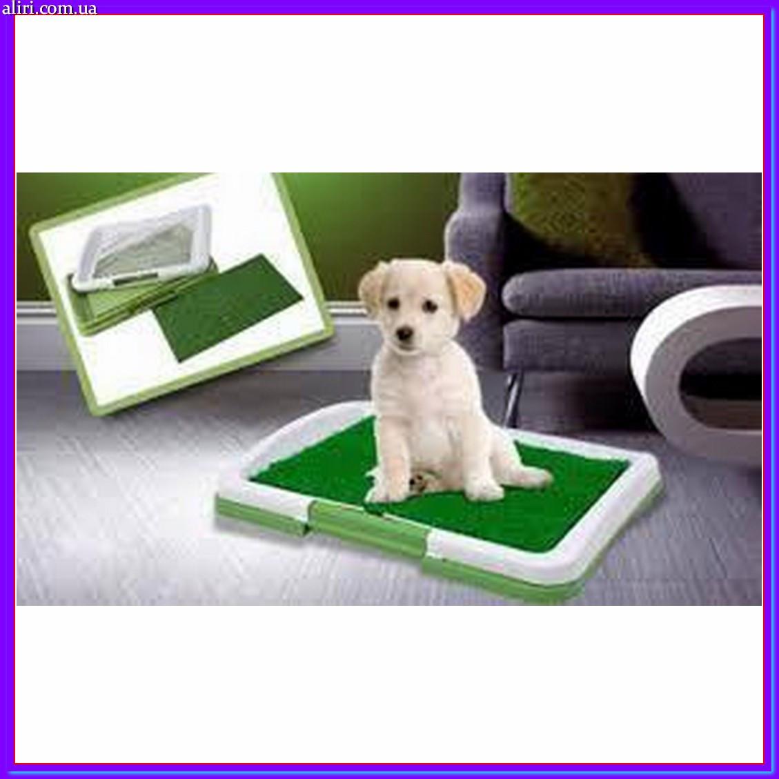 Туалет для собак Pad For Dog