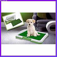 Туалет для собак Pad For Dog, фото 1