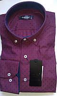 Мужская рубашка с длинным рукавом приталенная DERGI, код 3117-1