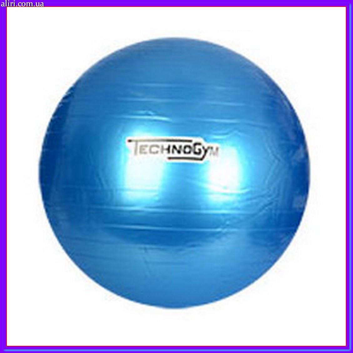 Мяч для фитнеса Techno Gym MS 0983 синий 75 см