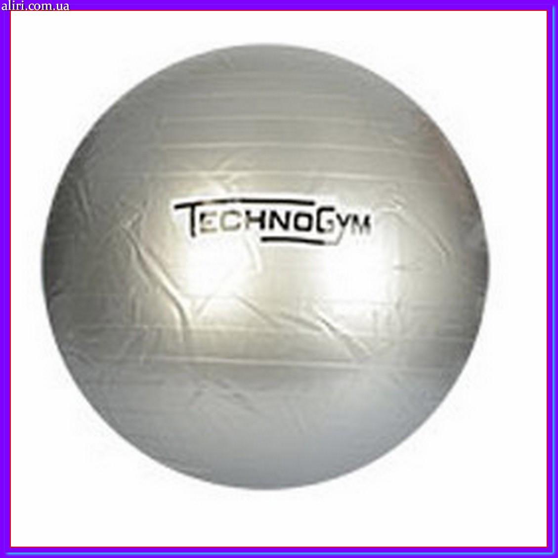 Мяч для фитнеса Techno Gym MS 0983 серый 75 см