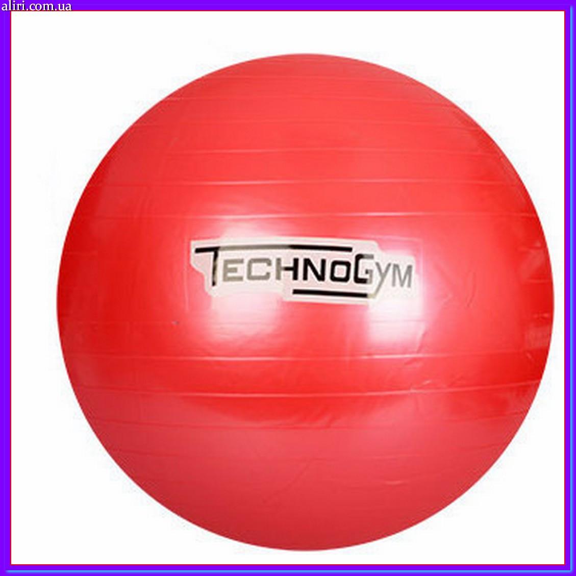 Мяч для фитнеса Techno Gym MS 0983 красный 75 см