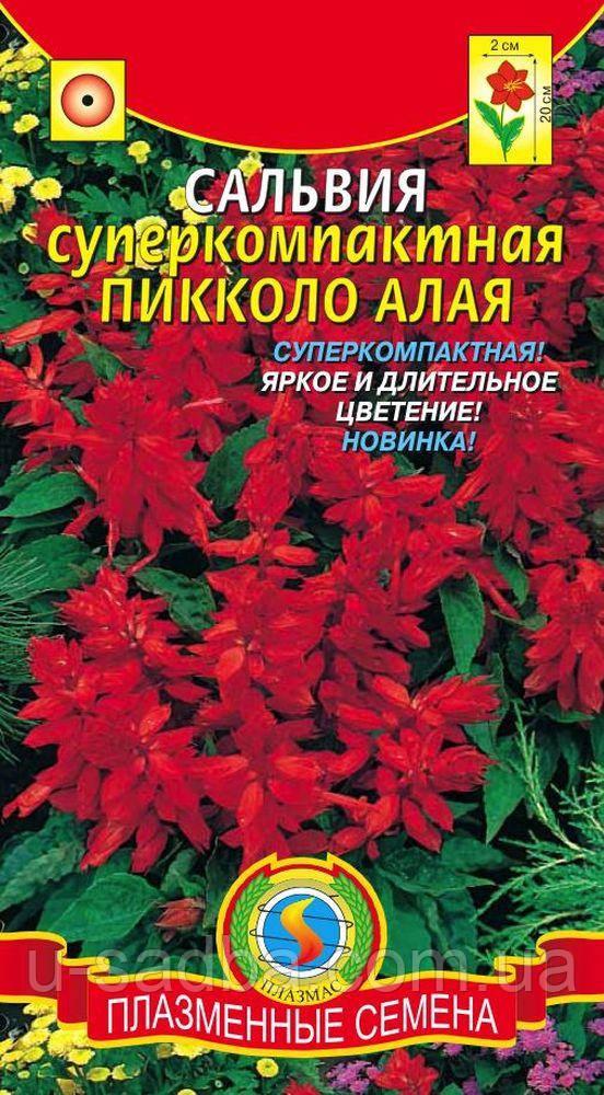 Семена цветов  Сальвия суперкомпактная Пикколо Алая 0,05 г красные (Плазменные семена)