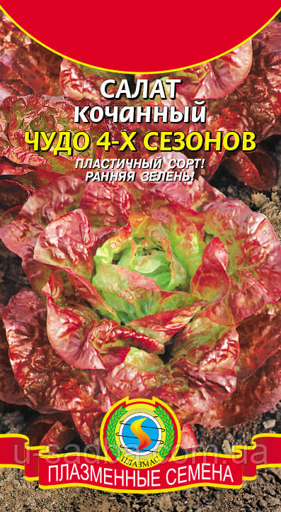 Семена салата Салат Чудо 4-х сезонов 0,5 г  (Плазменные семена)