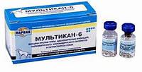 Вакцина Мультикан-6 1доза + р-р
