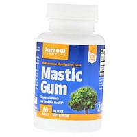 Mastic Gum 60вегтаб (36345027)