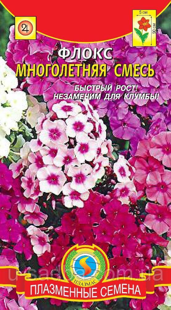 Семена цветов  Флокс многолетний смесь 5 шт смесь (Плазменные семена)