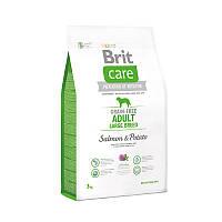 Брит Brit  Care GF Adult Large Breed Salmon & Potato 3 kg (д/собак весом от 25 кг)