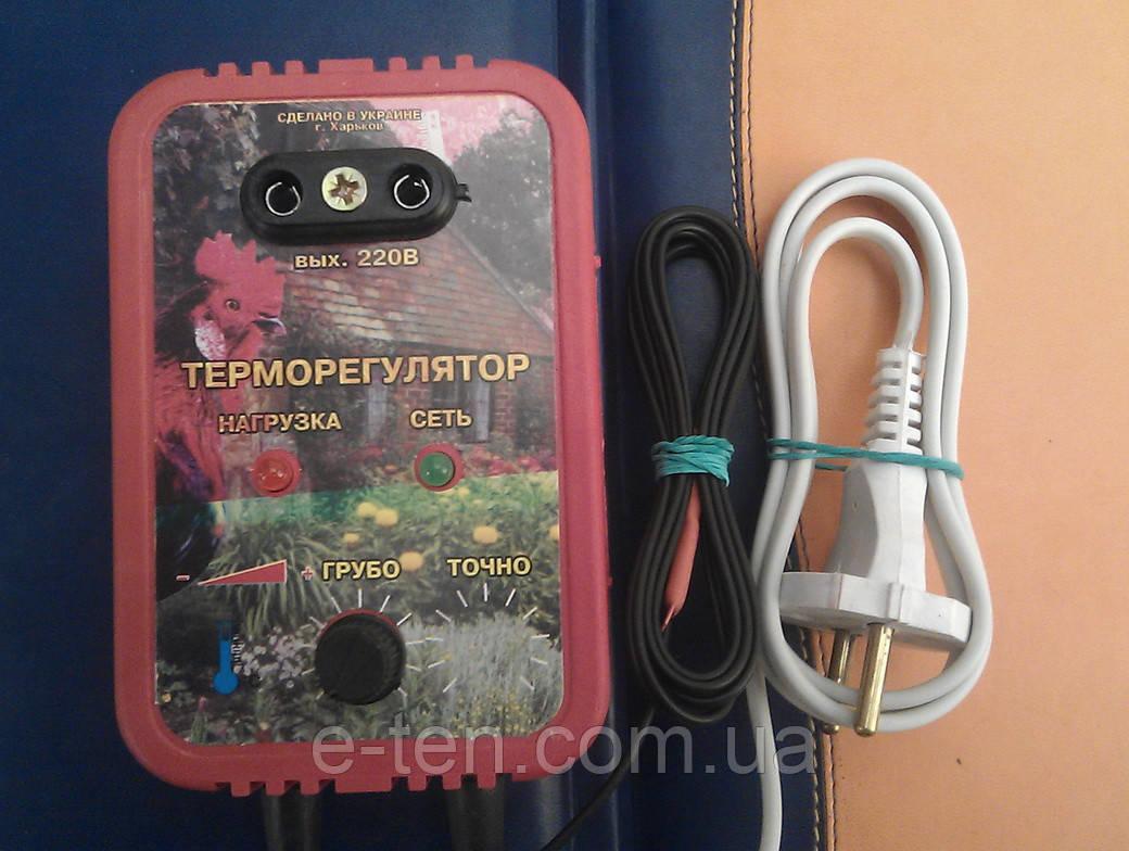 Терморегулятор инкубаторный Термо 1